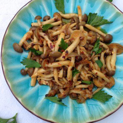 Wild Mushroom White Wine Sauce