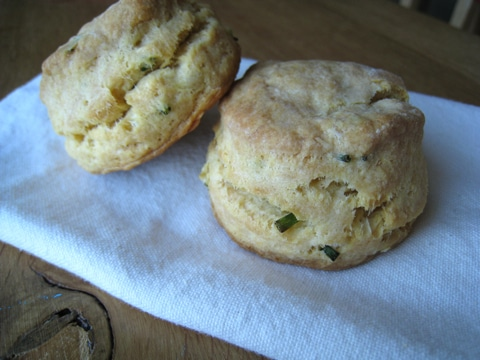 Chive and Sour Cream Biscuit Recipe - Ciao Florentina