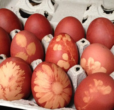 Easter Eggs Naturally Dyed with Onion Skins Video