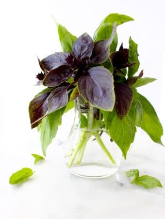 12 Cool Facts About Basil