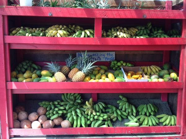 Fruit Stand Kauai