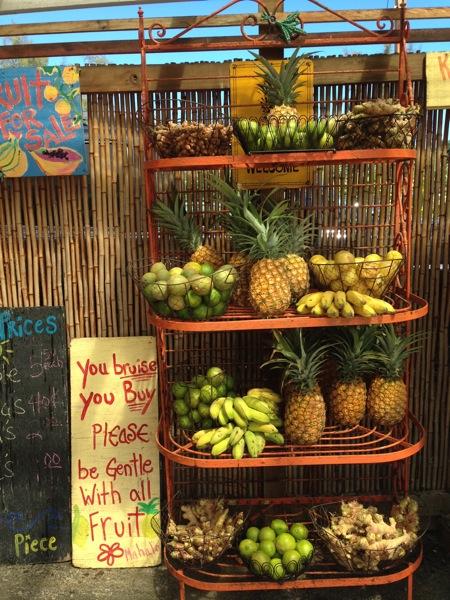Organic Fruit Stand Kauai