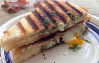 Goat Cheese & Herb Panini Recipe