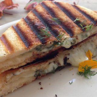 Goat Cheese Panini Recipe