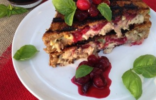 Cranberry Brie Turkey Panini Recipe