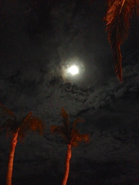 Full Moon Cabo San Lucas