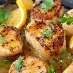 Seared Scallops Recipe with Orange Rum Sauce
